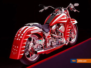 Harley-Davidson Custom 1995 motorcycle