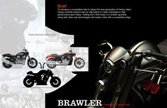 Brawler Concept 15
