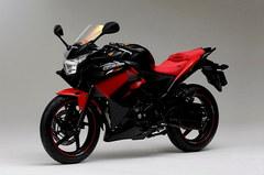 Mugen Honda CBR250R_6