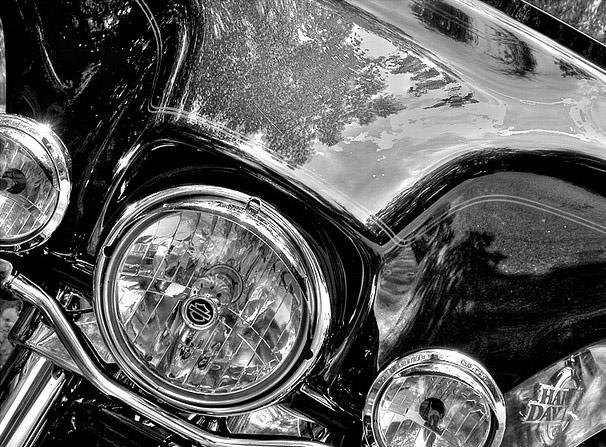 Black & White 05