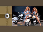 Babes-and-Bikes