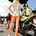 Circut-De-Catalunya-Grid-Girl