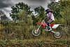 mc22_Wild Motocross
